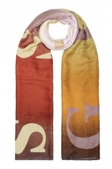 AW6586 POL03 NOT COORDINATED SCARF